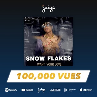 Snow Flakes - Article